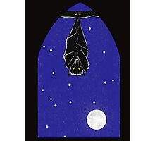 Bat in the Window Photographic Print
