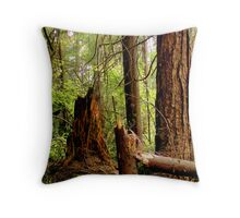Stanley Park -Broken Throw Pillow