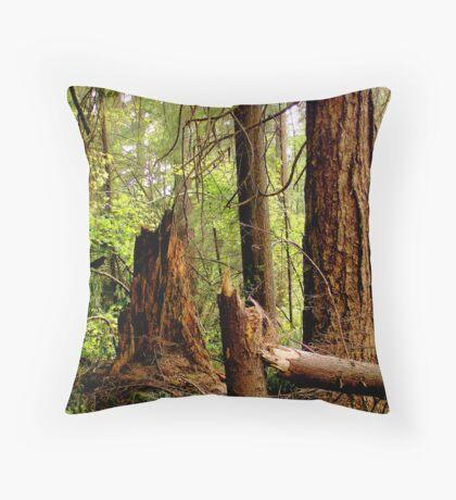 Stanley Park -Broken Throw Pillow