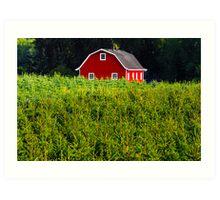 """Red Barn"" Art Print"