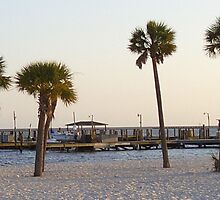 Pier and palms by Justin Shaffer