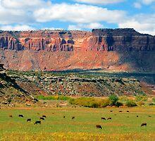 """Indiana Creek Ranch"" by David Lee Thompson"