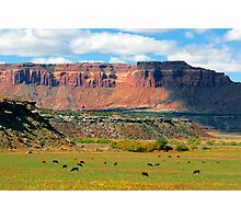 """Indiana Creek Ranch"" Photographic Print"