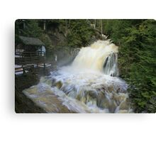 Misty spring falls, Victoria Park, Truro, NS Canvas Print