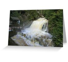 Misty spring falls, Victoria Park, Truro, NS Greeting Card