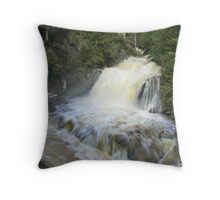 Misty spring falls, Victoria Park, Truro, NS Throw Pillow