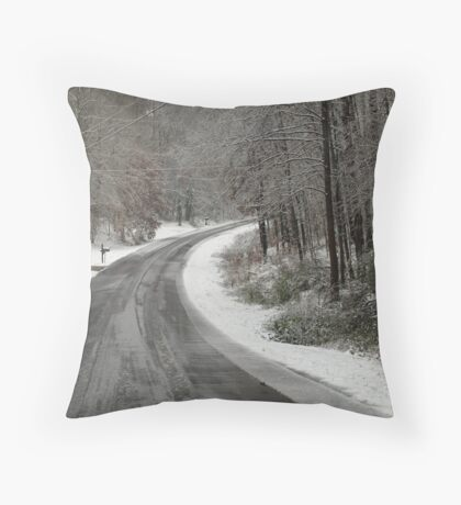 Icey Road Throw Pillow