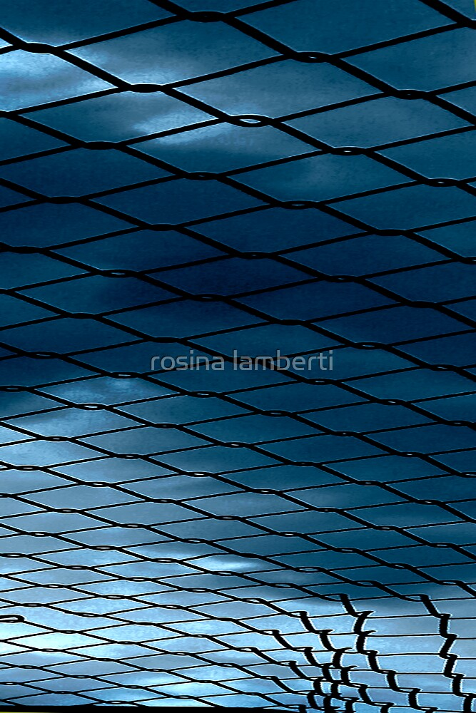 Fenced In by Rosina  Lamberti