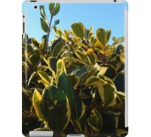 HOLLY WITH RED BERRY iPad Case/Skin
