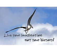 Live your imagination... Photographic Print