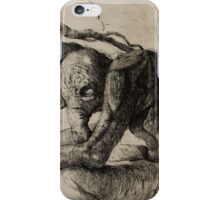 Scarfy iPhone Case/Skin