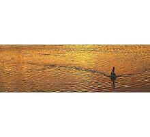 Wake - Narrabeen Lakes, Sydney Beaches Sydney Australia Photographic Print