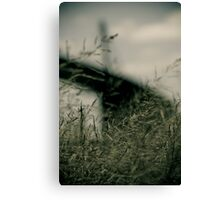 And after all our efforts it is still growing Canvas Print