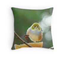 Isn't Possession  9/10ths Of The Law? - Silver-Eye - NZ Throw Pillow