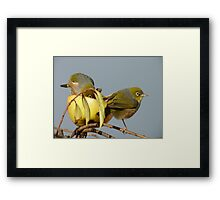My Love Is Patient And Kind.... - Silver-Eyes - NZ Framed Print