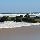 Low Tide by Norma Blackburn