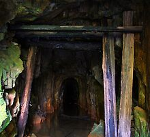 Gold Mine by Lindsay Knowles