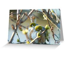 Love Is... Snuggling Up On A Cold Winters Day.. - Silver-Eyes - NZ Greeting Card