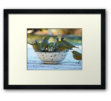 Make Room, My Feet Are Freezing Down Here!! - Silver-Eyes - NZ Framed Print