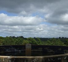 Old water tank with the cloudy afternoon sky by steriodog