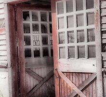 the doors by budrfli