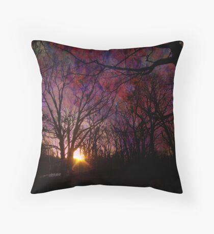 Toward The Dream Throw Pillow