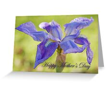 Bearded Iris for Mother's Day Greeting Card