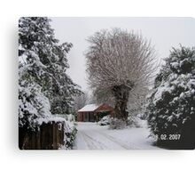 A winters day Metal Print