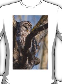 Barred Owl in Tree - Brighton, Ontario T-Shirt