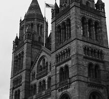 national history museum by cool3water