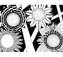 Zen Flowers Photographic Print