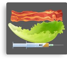 Bacon, Lettuce, and Testosterone Canvas Print