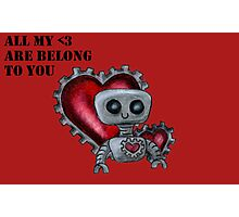 All My <3 Are Belong to You Photographic Print