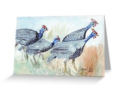 Guinea fowl in my garden Greeting Card