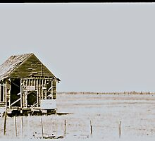 This Old House by Erika Sturgill