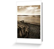 Drift Wood, Shelly Beach And a Boat Under The Sun Greeting Card