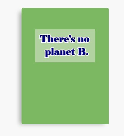 There's No Planet B Canvas Print