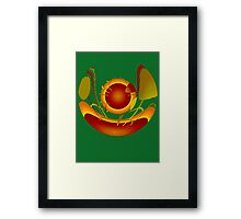 Earth Ship-Brown Framed Print