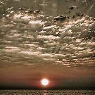 A Moment After Sunrise by Suni Pruett