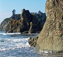 Sea Stacks, Olympic National Park, Washington by Lynn Bawden