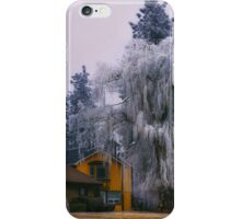 Frozen Willow iPhone Case/Skin