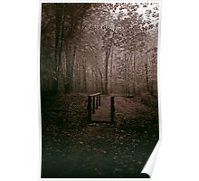 Wooded Fence Poster