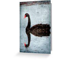 Morning on Dangars Lagoon III Greeting Card