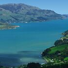 Akaroa by Bilks