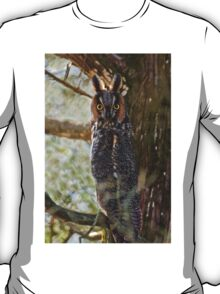Long Eared Owl - Amherst Island, Ontario T-Shirt