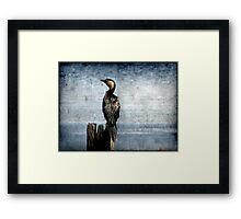 Bird Watching Framed Print