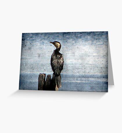Bird Watching Greeting Card