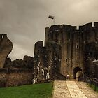 Caerphilly Castle by Rob Hawkins