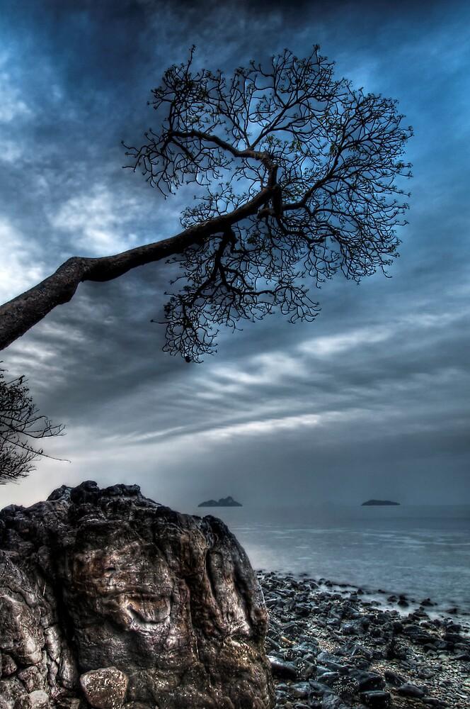 Island Eve by Robert Mullner