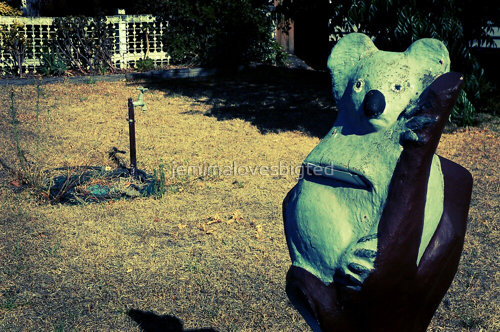 Koala by jemimalovesbigted